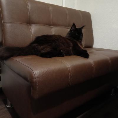 Замечательный диванчикфирмы Нико
